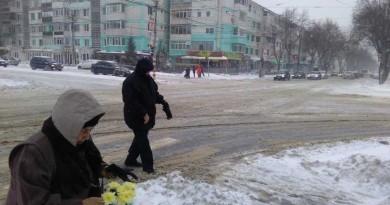 iarna dorob1