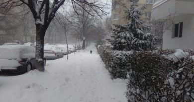 iarna braila