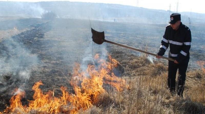 incendiu-vegetatie-800x500_c