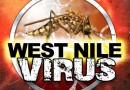 Anunţ important în legătură cu virusul West Nile