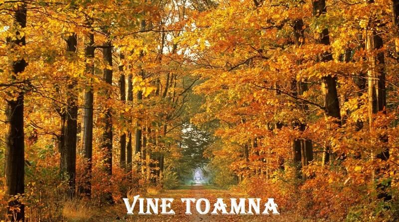 toamna-800x445