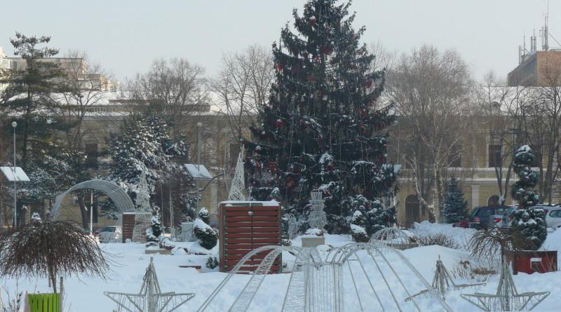 iarna (1)