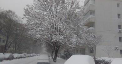 iarna-br-800x445