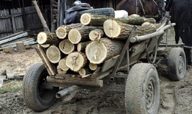 caruta-cu-lemne