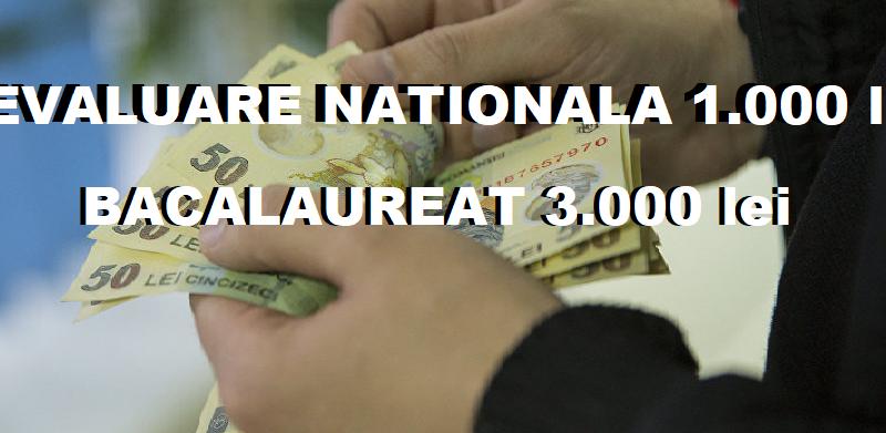 bani 11