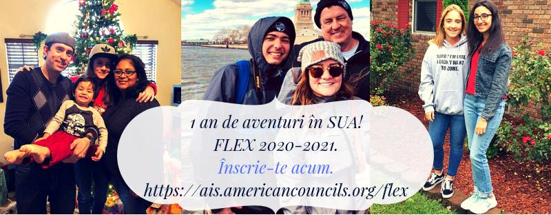 flex-2019-1