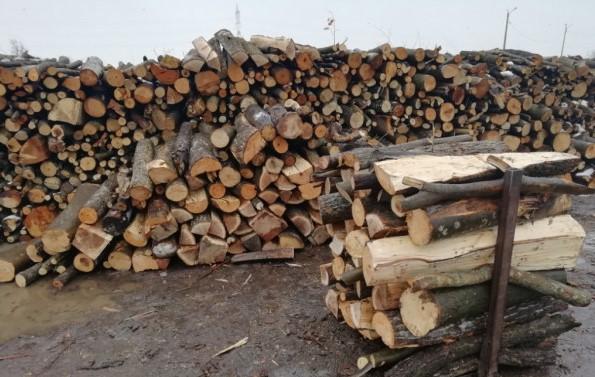lemn-de-foc1