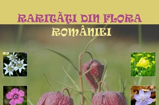 flori muzeu1